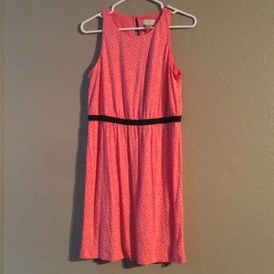 Pink White Black Ann Taylor Size MP Dress W/Tags